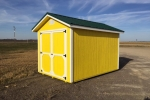 Bright Yellow Wooden Shed 8x12